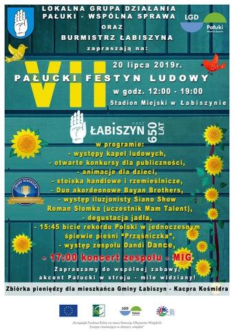Galeria dla VII Pałucki Festyn Ludowy